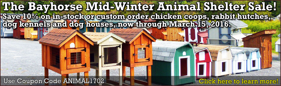 2017 Mid-Winter Animal Shelter Sale
