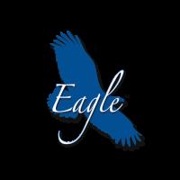Eagle Play Sets Logo